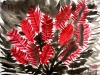 angelica-chinese-bottle-brush-200911