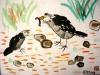 ayesha-birds-210910