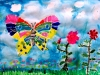 butterfly0506
