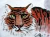 tiger-260610
