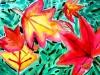 vautumn-leaves-0506